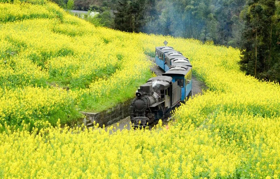 马过河风景区火车